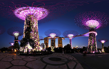 Supertree Grove at night, Gardens by the Bay - Panorama 360°