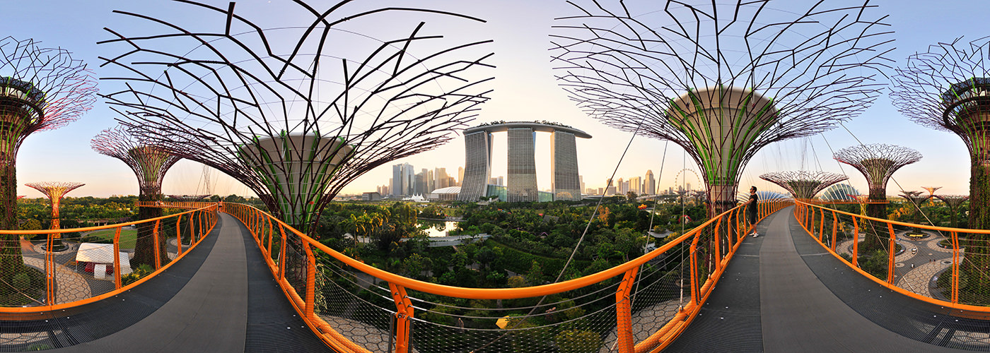 Supertree Grove and MBS, Gardens by the Bay - Panorama 360°