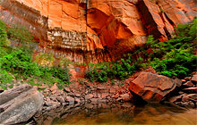 Upper Emerald Pool, Zion National Park - Visite virtuelle